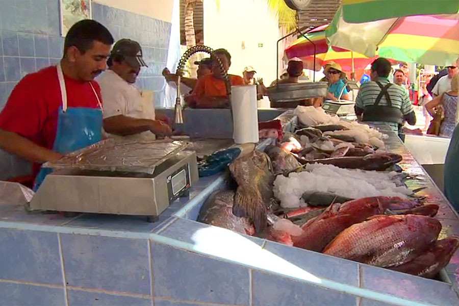 Fish market in La Cruz de Huanacaxtle
